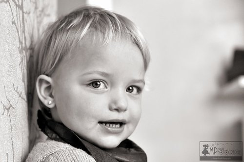 Photographe - MPrioultPhotographie  - photo 1