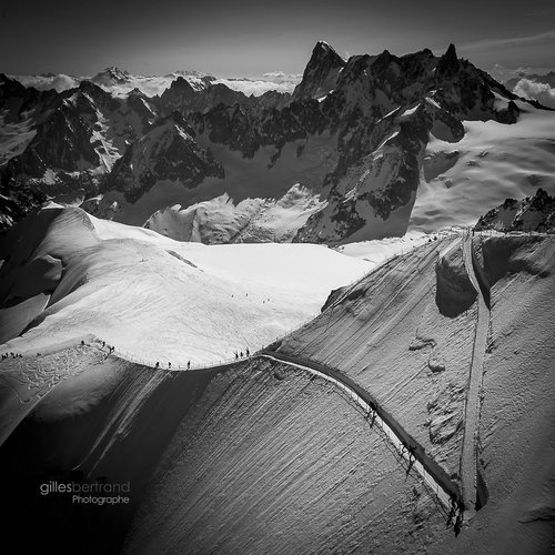 Photographe - gillesbertrandphotos - photo 28