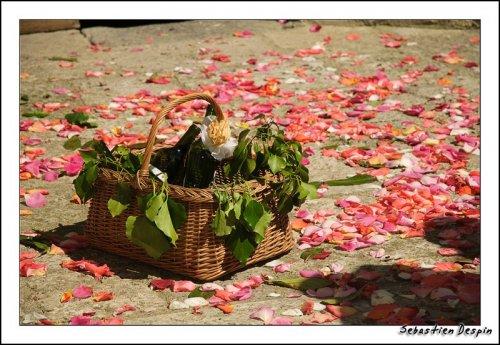 Photographe mariage - Despin Photography - photo 11