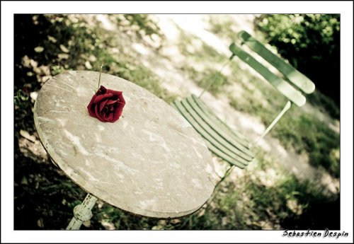 Photographe mariage - Despin Photography - photo 9