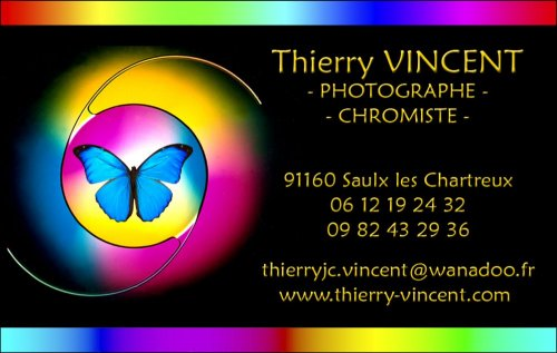 Photographe mariage - Thierry VINCENT - photo 65