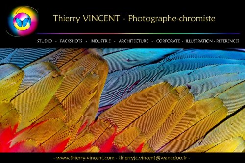 Photographe mariage - Thierry VINCENT - photo 1