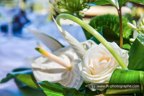 Photographe mariage - Joseph Hilfiger Photographies - photo 44