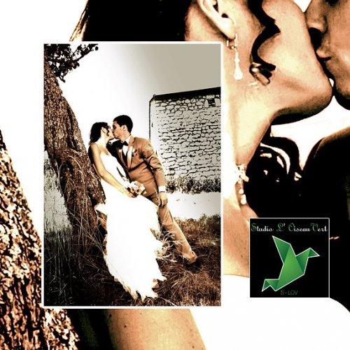 Photographe mariage - Studio L' Oiseau Vert - photo 6
