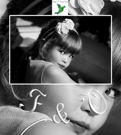 Photographe mariage - Studio L' Oiseau Vert - photo 2