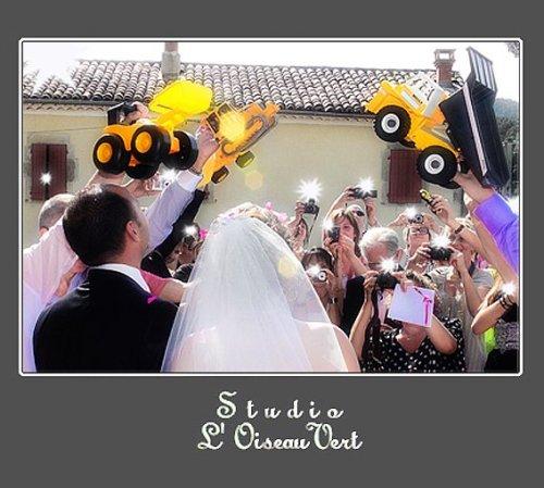 Photographe mariage - Studio L' Oiseau Vert - photo 17