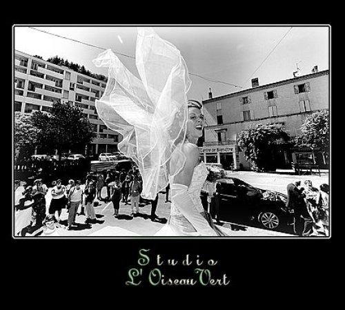 Photographe mariage - Studio L' Oiseau Vert - photo 24