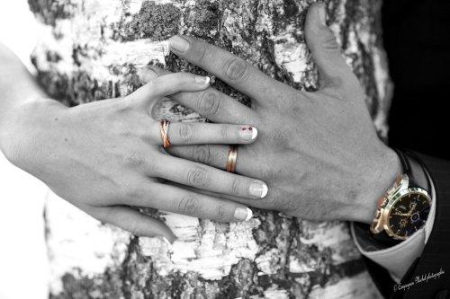 Photographe mariage - Compagnon Michel photographie - photo 19