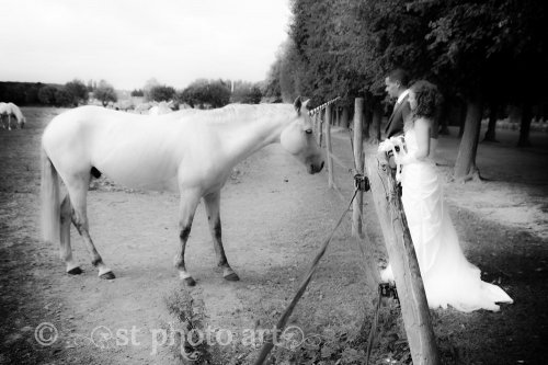 Photographe mariage - ST Photo Art - photo 76