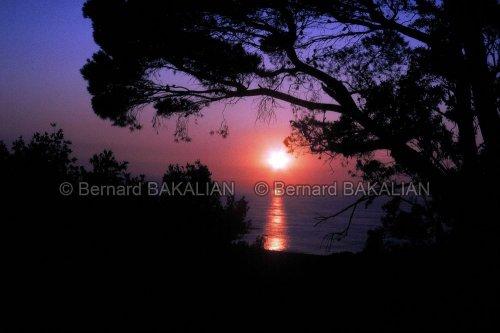 Photographe - Bernard BAKALIAN - Photographe - photo 29