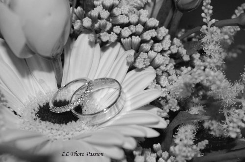 Photographe mariage - LL Photo Passion - photo 34