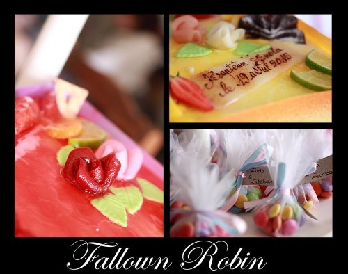 Photographe mariage - fallown robin - photo 144