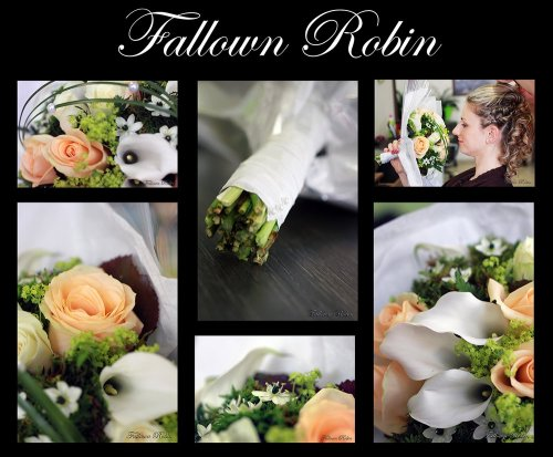 Photographe mariage - fallown robin - photo 136