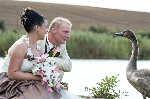 Photographe mariage - Anne Schaefer - photo 37