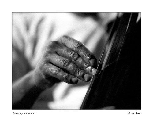 Photographe -       Sophie LE  ROUX  - photo 34