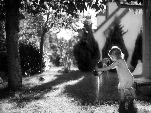 Photographe - Sylvain Bégué Photographie - photo 22