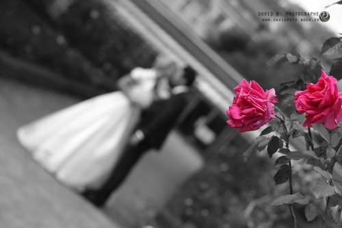 Photographe mariage - Davidfoto - photo 21