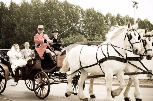 Photographe mariage - Mariage et Portrait - photo 20