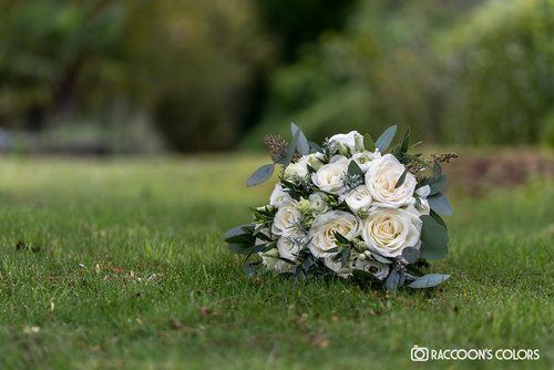 Photographe mariage - RACCOON'S COLORS - photo 5