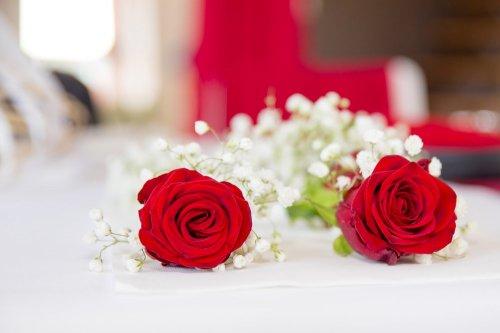 Photographe mariage -  LEZIER ARNAUD - photo 186