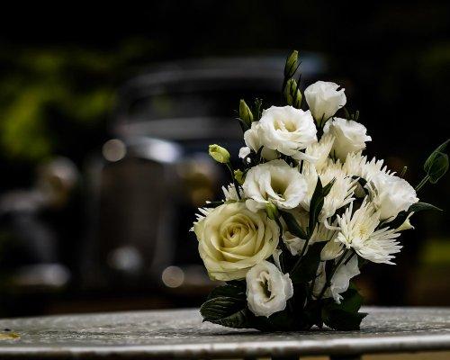Photographe mariage - jouanneaux-photographie - photo 70