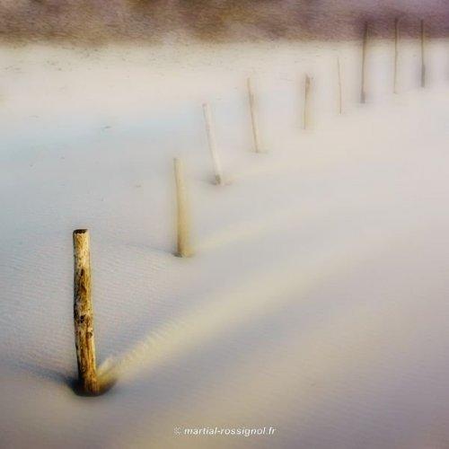 Photographe - Martial Rossignol - photo 31
