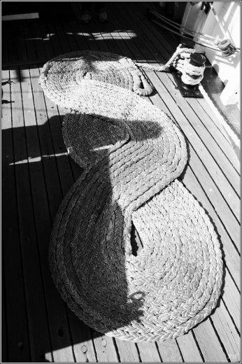 Photographe - Erwan Nicolas - photo 23