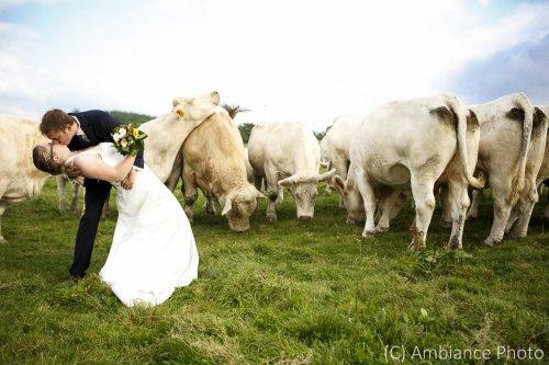 Photographe mariage - Ambiance Photo - photo 65