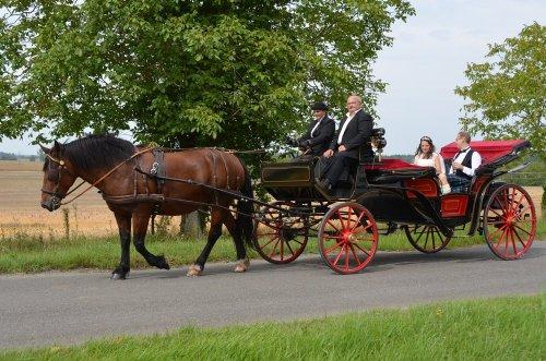 Photographe mariage - pixea-photo - photo 44