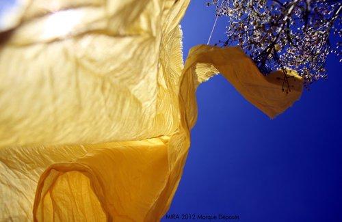 Photographe - Samera tamjounti - photo 62