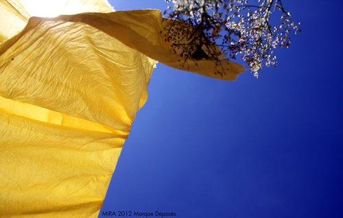 Photographe - Samera tamjounti - photo 64