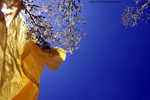 Photographe - Samera tamjounti - photo 61