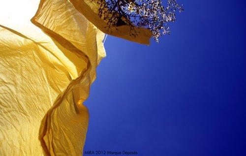 Photographe - Samera tamjounti - photo 63