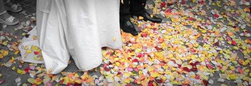 Photographe mariage - Anaïs Provost - photo 7