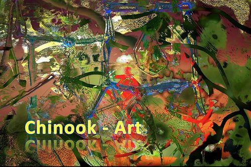 Photographe - Chinook-Art - photo 13