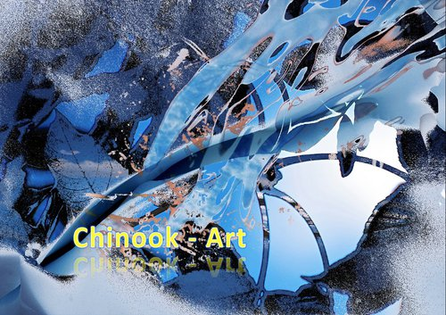 Photographe - Chinook-Art - photo 47