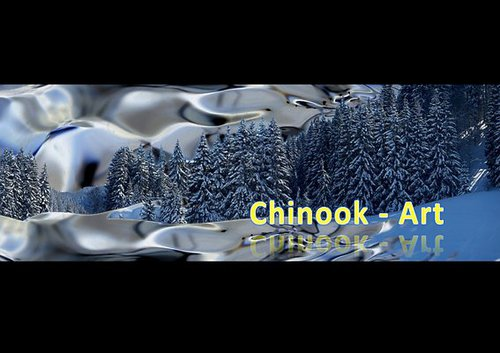 Photographe - Chinook-Art - photo 41