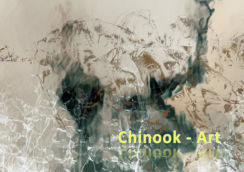 Photographe - Chinook-Art - photo 32