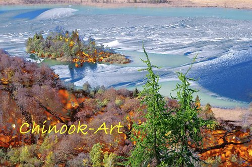 Photographe - Chinook-Art - photo 58