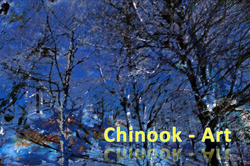 Photographe - Chinook-Art - photo 60