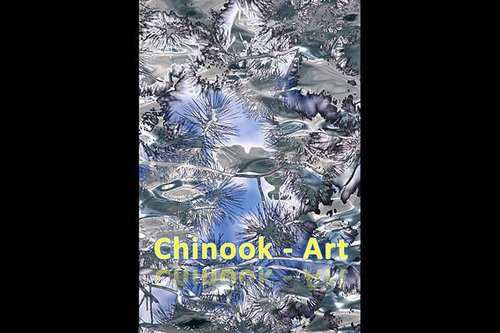 Photographe - Chinook-Art - photo 66