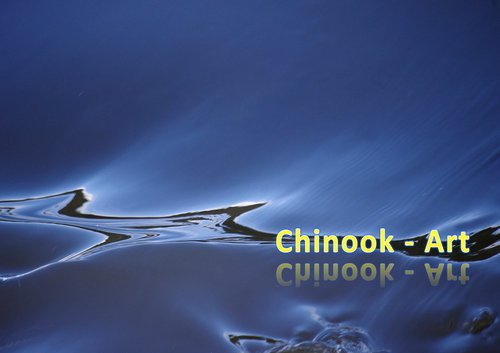 Photographe - Chinook-Art - photo 44