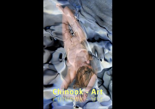 Photographe - Chinook-Art - photo 38