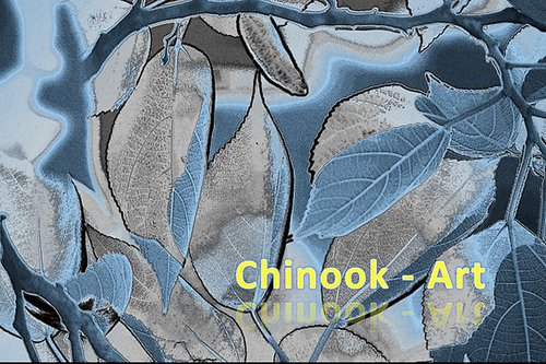 Photographe - Chinook-Art - photo 65