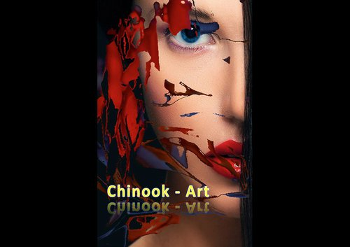 Photographe - Chinook-Art - photo 18