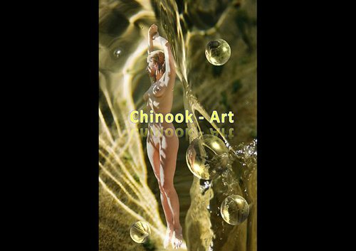 Photographe - Chinook-Art - photo 20