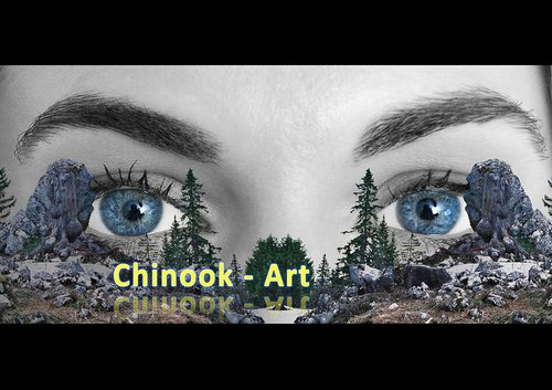 Photographe - Chinook-Art - photo 36