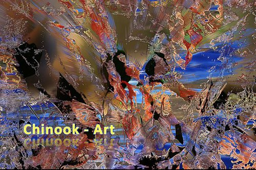 Photographe - Chinook-Art - photo 12