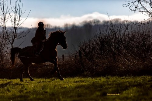 Photographe mariage - jerome genée - photo 9