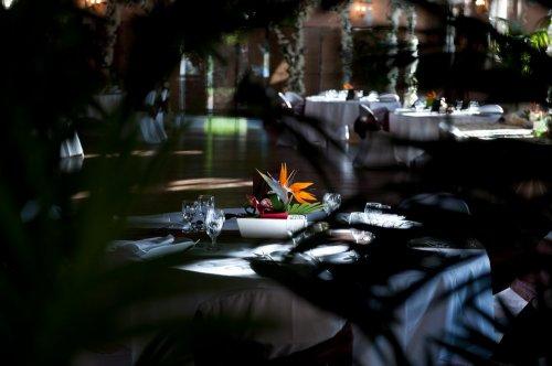 Photographe mariage - Sandra Daveau - photo 40